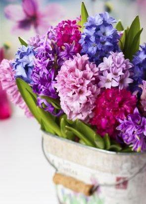 כיצד נבחר זר פרחים?